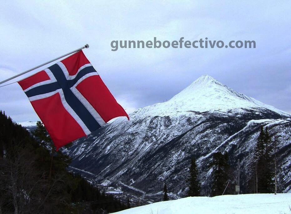 เดนมาร์กและนอร์เวย์ และกล่าวว่าพวกเขาจะเปิดการท่องเที่ยวระหว่างสองประเทศตั้งแต่วันที่ 15 มิถุนายน แต่จะรักษาข้อ จำกัด ไม่รวมสำหรับชาวสวีเดน