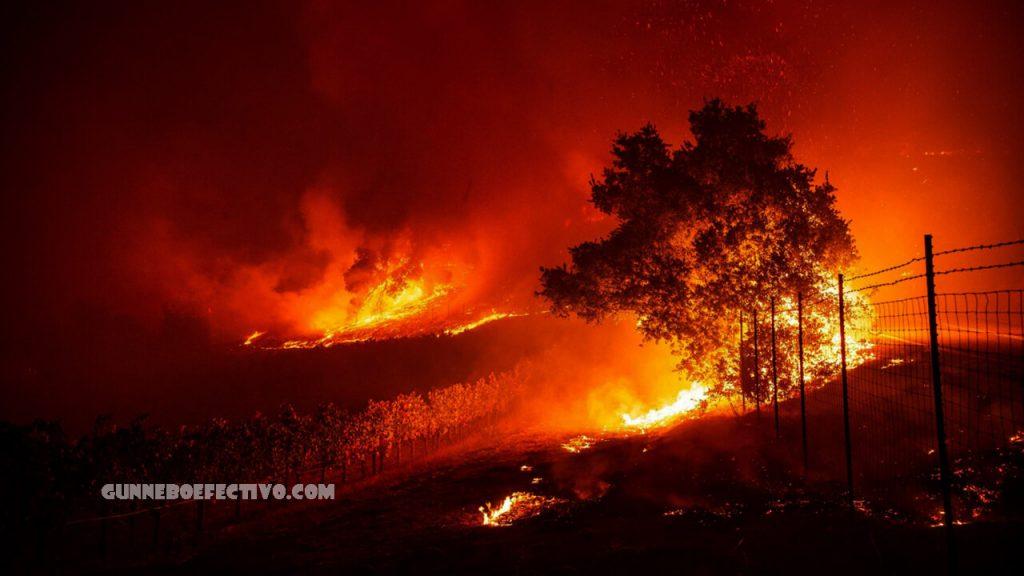 ไฟป่าแคลิฟอร์เนีย มีแนวโน้มมาจากภาวะโลกร้อน นักวิทยาศาสตร์กล่าวว่าการเปลี่ยนแปลงสภาพภูมิอากาศกำลังผลักดันขนาดและผลกระทบของไฟป่า